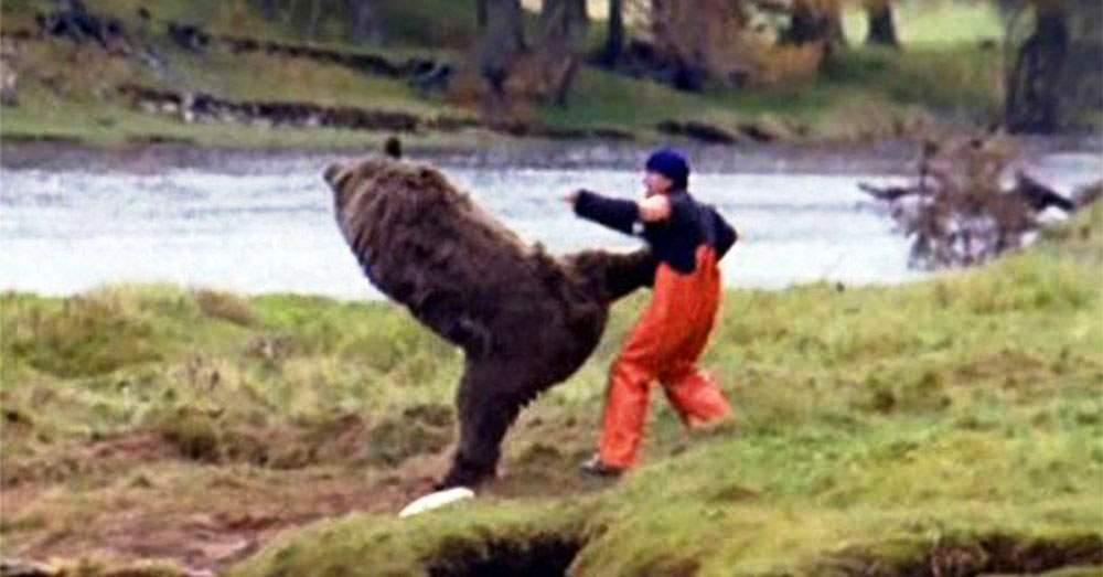 Cel mai periculos loc din țară! În Vâlcea e o pădure unde urșii știu karate