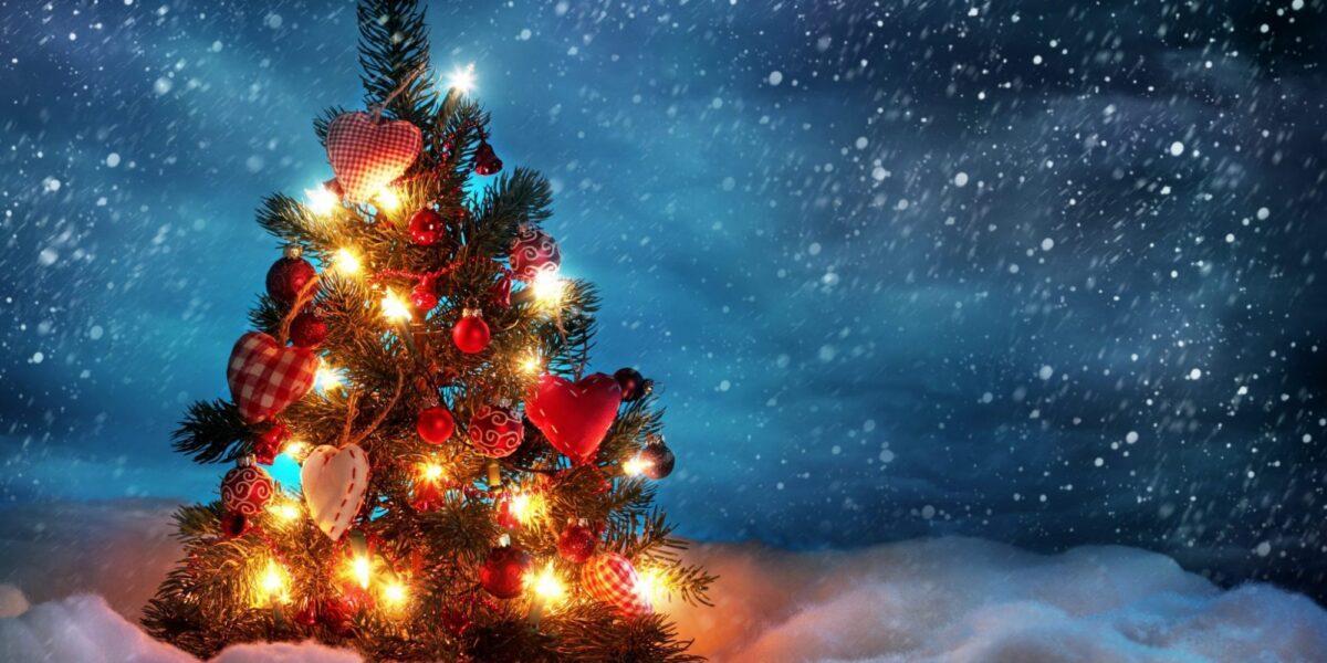 Care este istoria pomului de iarna?
