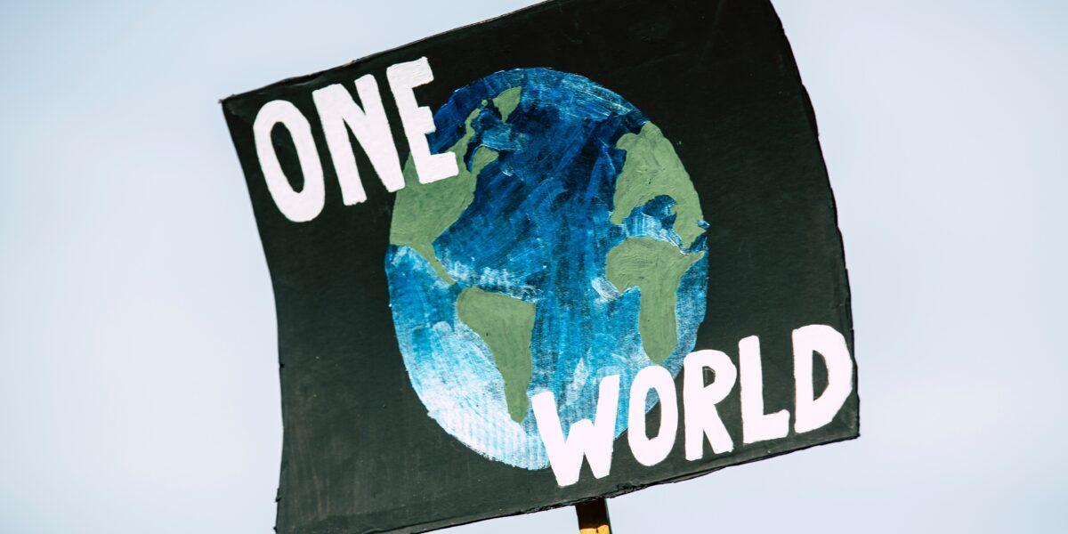 Lumea noastră după alegeri: Cu susul în jos