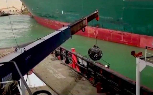 Celulă de criză la ANSVSA pentru gestionarea navelor cu animale care au rămas blocate în Canalul Suez