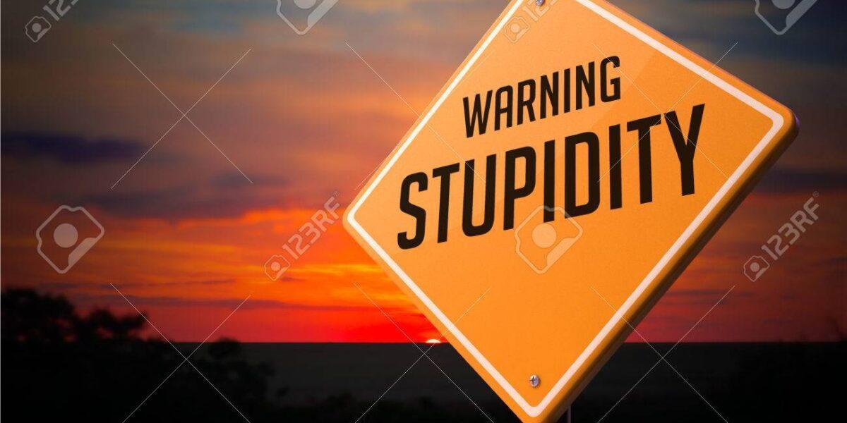 Majoritatea oamenilor spun ca daca esti prost nu vei avea nici un viitor. Dar oare asa este ?