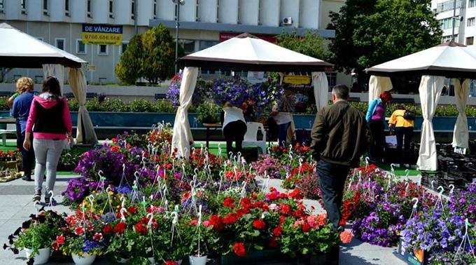 Vasluiul revine la viață: Serbarea Florilor și concerte în aer liber