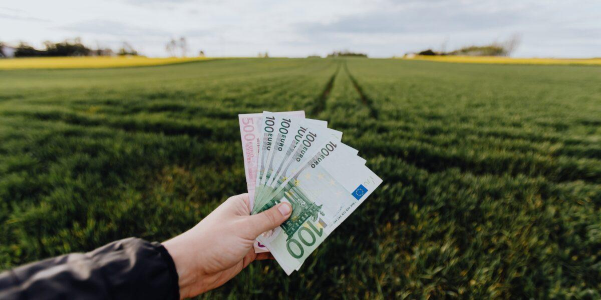 Cum împarte Guvernul cele 29,2 miliarde de euro din PNRR