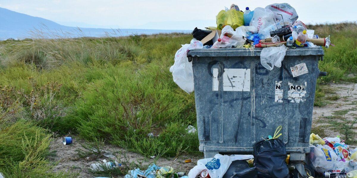 România, lada de gunoi a lumii: Contracte pentru importul a 2.000 de vapoare de deșeuri