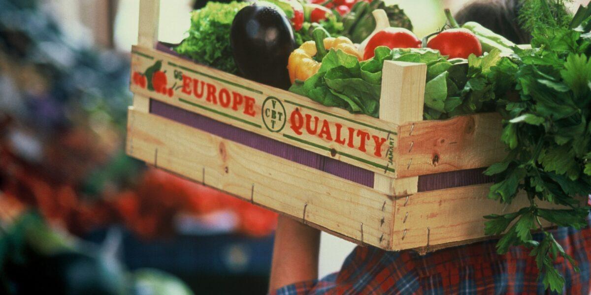 Companie de agrotech: Digitalizarea agriculturii poate dubla veniturile fermierilor și accelerează competitivitatea