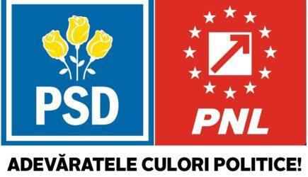 Adevaratele culori politice